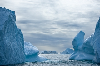 Icebergs in eastern Greenland