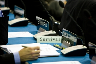 Yesterday the International Youth Delegates set themselves an ambitious goal. They want a simple and powerful principle to be a formal outcome of Poznan: We must negotiate an agreement that will safeguard the survival of all countries and peoples. The European Community supported this principle. UNFCCC COP 14 (©Robert vanWaarden ALL RIGHTS RESERVED)