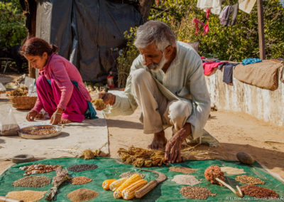 """Seeds are critical to our existence and we must preserve seeds like we would preserve our future generations."" Vijay Jardhari is a lead activist from the Chipko Movement and the father of the seeds saving movement in India . His family participates actively in sorting and preserving of their traditional seeds."