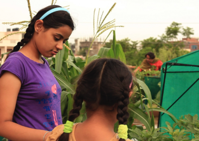 Environmentalism has to become a part of our education system. Rooftop organic framing is becoming a mass movement in India where children and adults are participating in big numbers to create a better world.